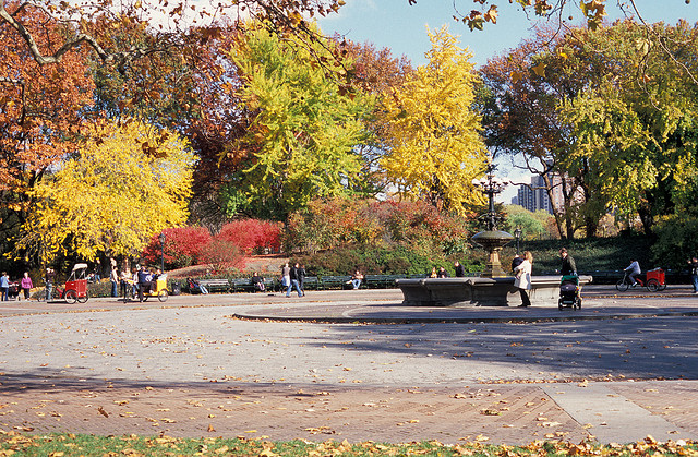Cherryl Hill, Central Park