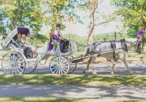 Central Park Horse Carriage Wedding