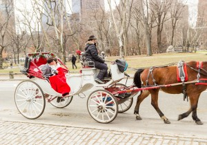 New York City Wedding Elopement Horse Carriage Central Park